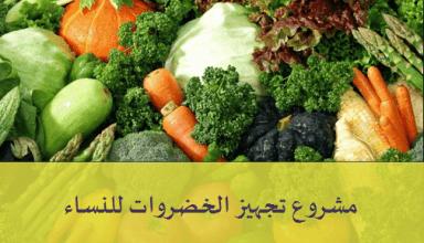 مشروع تنظيف وتجهيز الخضروات