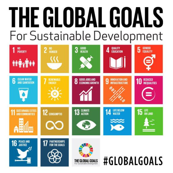 United Nations set to adopt Sustainable Development Goals ...