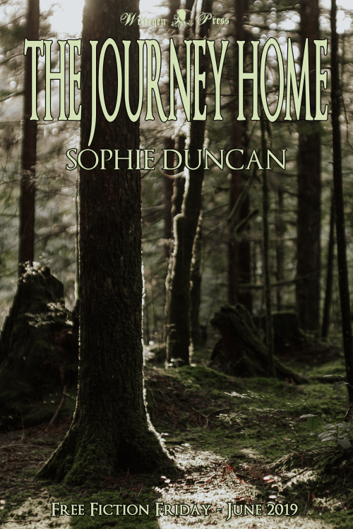 Wooded background with The Journey Home, Sophie Duncan and Free Fiction Friday - June 2019 over the top.