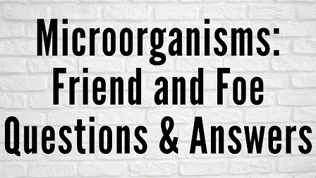 Microorganisms - Friend and Foe Questions & Answers