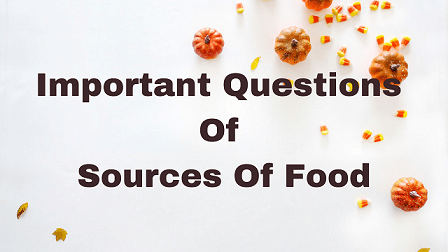 Important Questions Of Sources Of Food