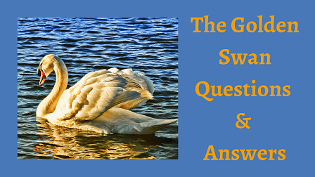 The Golden Swan Questions & Answers