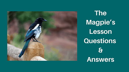 The Magpie's Lesson Questions & Answers