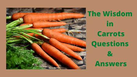 The Wisdom in Carrots Questions & Answers