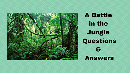A Battle in the Jungle Questions & Answers