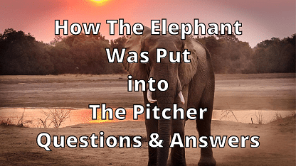 How The Elephant Was Put into The Pitcher Questions & Answers