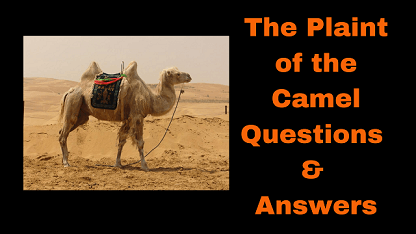 The Plaint of the Camel Questions & Answers