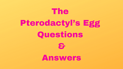 The Pterodactyl's Egg Questions & Answers