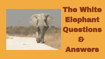 The White Elephant Questions & Answers