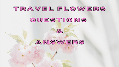 Travel Flowers Questions & Answers