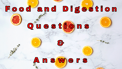 Food and Digestion Questions & Answers
