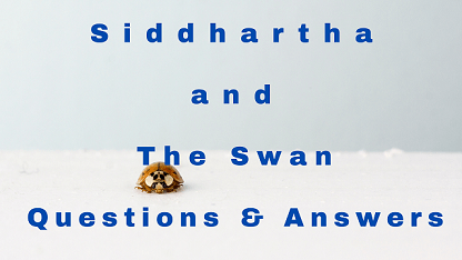 Siddhartha and The Swan Questions & Answers