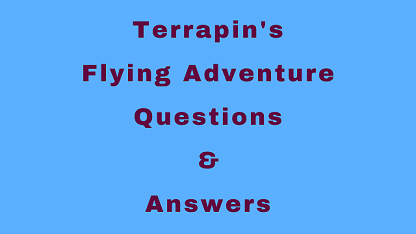 Terrapin's Flying Adventure Questions & Answers