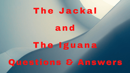 The Jackal and The Iguana Questions & Answers