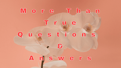 More Than True Questions & Answers