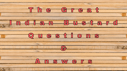 The Great Indian Bustard Questions & Answers