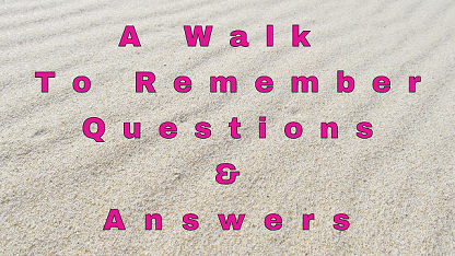 A Walk To Remember Questions & Answers