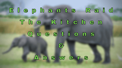 Elephants Raid The Kitchen Questions & Answers