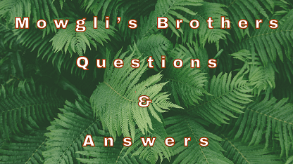 Mowgli's Brothers Questions & Answers