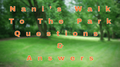Nani's Walk To The Park Questions & Answers