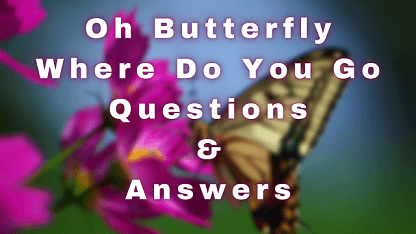 Oh Butterfly Where Do You Go Questions & Answers