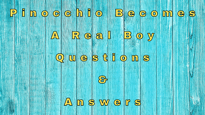 Pinocchio Becomes A Real Boy Questions & Answers