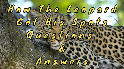 How The Leopard Got His Spots Questions & Answers