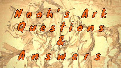 Noah's Ark Questions & Answers