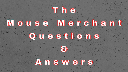 The Mouse Merchant Questions & Answers