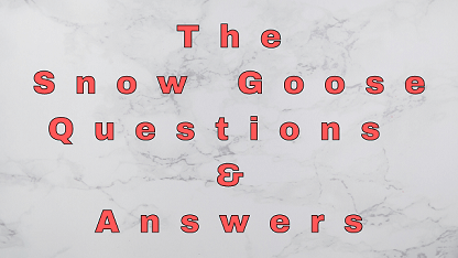 The Snow Goose Questions & Answers