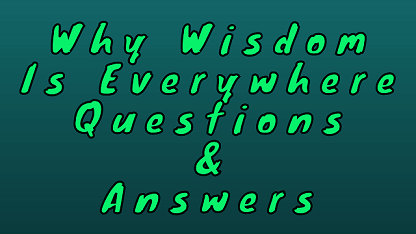 Why Wisdom Is Everywhere Questions & Answers