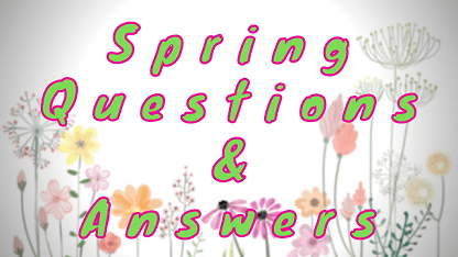 Spring Questions & Answers
