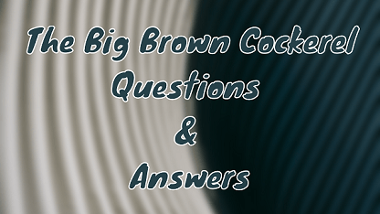 The Big Brown Cockerel Questions & Answers