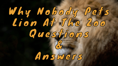Why Nobody Pets Lion At The Zoo Questions & Answers