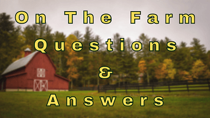 On The Farm Questions & Answers