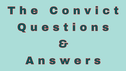 The Convict Questions & Answers
