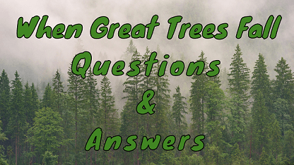 When Great Trees Fall Questions & Answers
