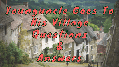 Younguncle Goes To His Village Questions & Answers