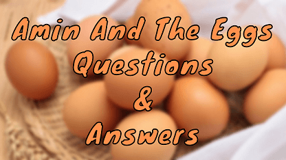 Amin And The Eggs Questions & Answers