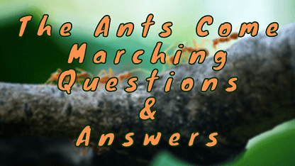 The Ants Come Marching Questions & Answers