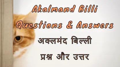 Akalmand Billi Questions & Answers अक्लमंद बिल्ली प्रश्न और उत्तर