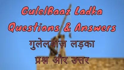 GulelBaaz Ladka Questions & Answers गुलेलबाज़ लड़का प्रश्न और उत्तर