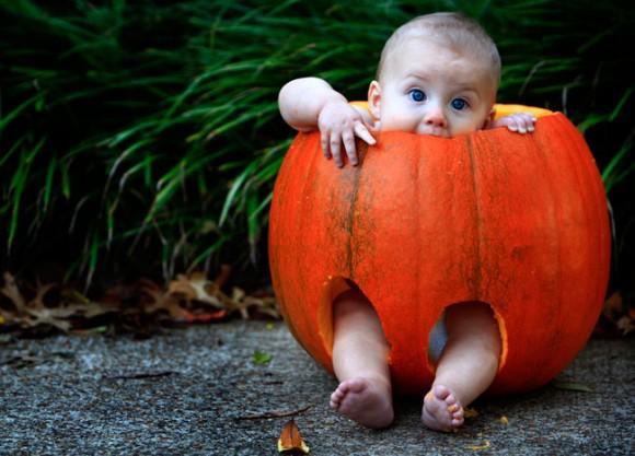 baby pumpkin_191780