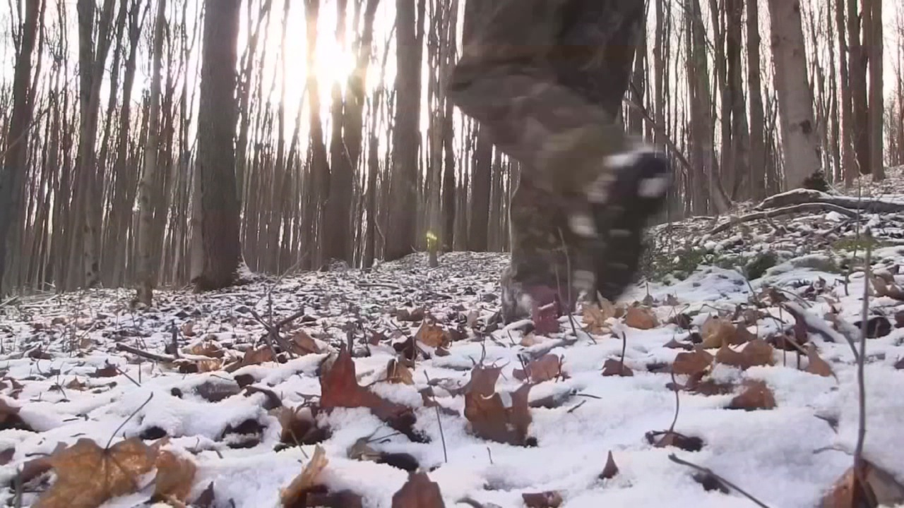 Hunting while drunk