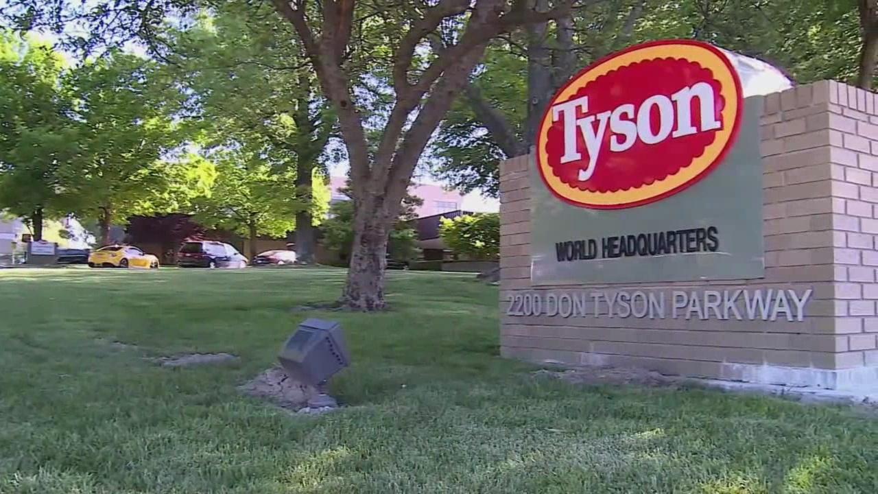 Tyson chicken fritter recall