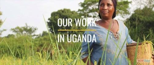 SHA Uganda