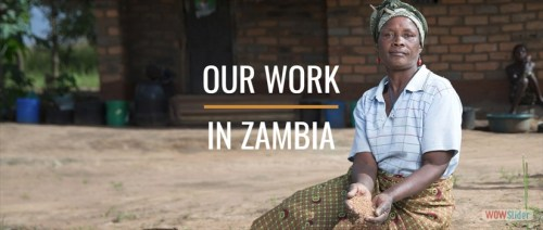 SHA Zambia
