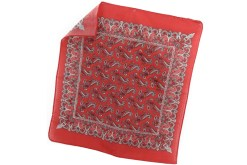 Paliacates pañuelos impresos - Wiwi fiestas de mayoreo