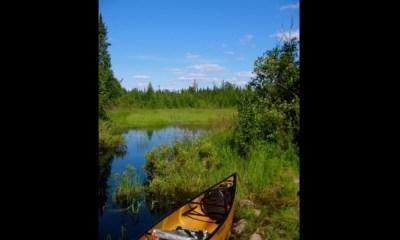Boundary Waters canoe area near Ely, Minn.