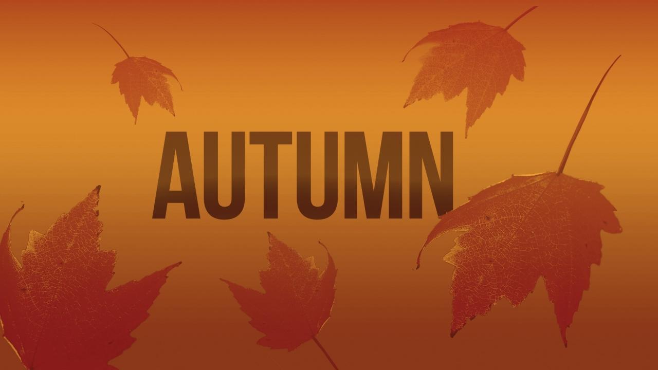 Autumn-fall-leaves-foliage_176864